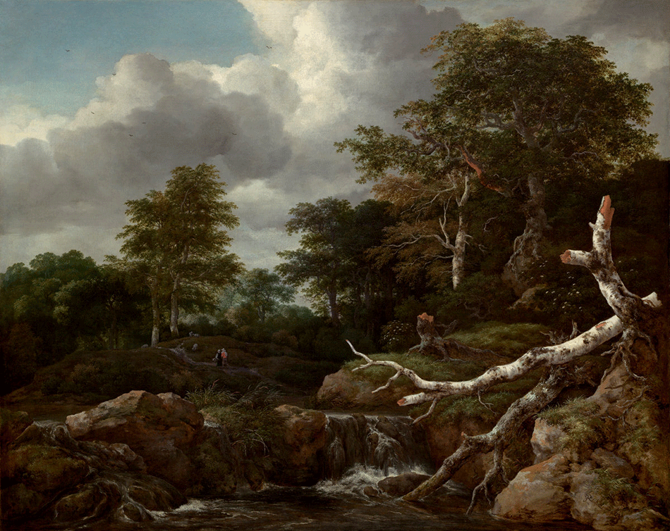 riusdael-jacob-van_forest-scene_widener-joseph-early-collection_national-gallery-of-art_washington-dc