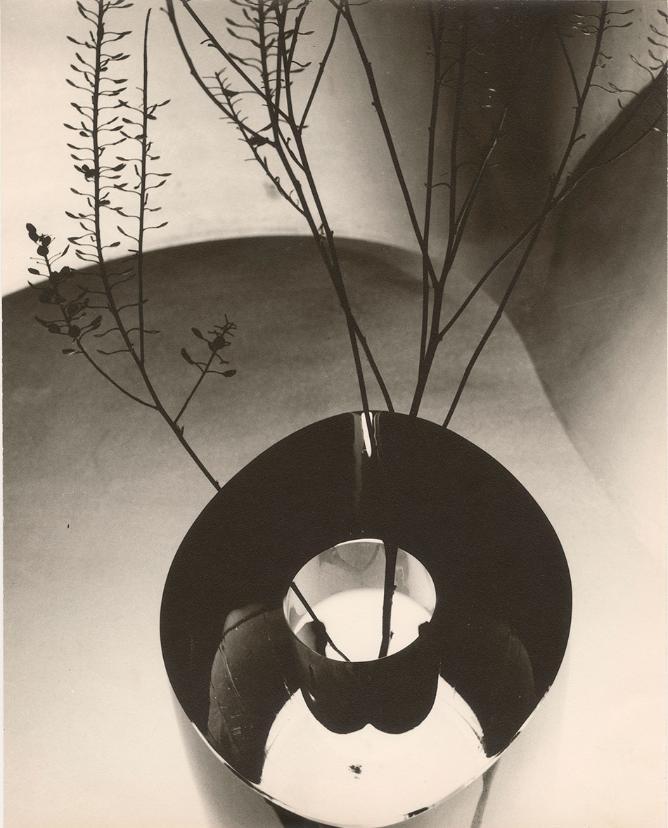 carlotta corpron_autumn still life_otis and velma davis dozier collection_ jerry bywaters special collections