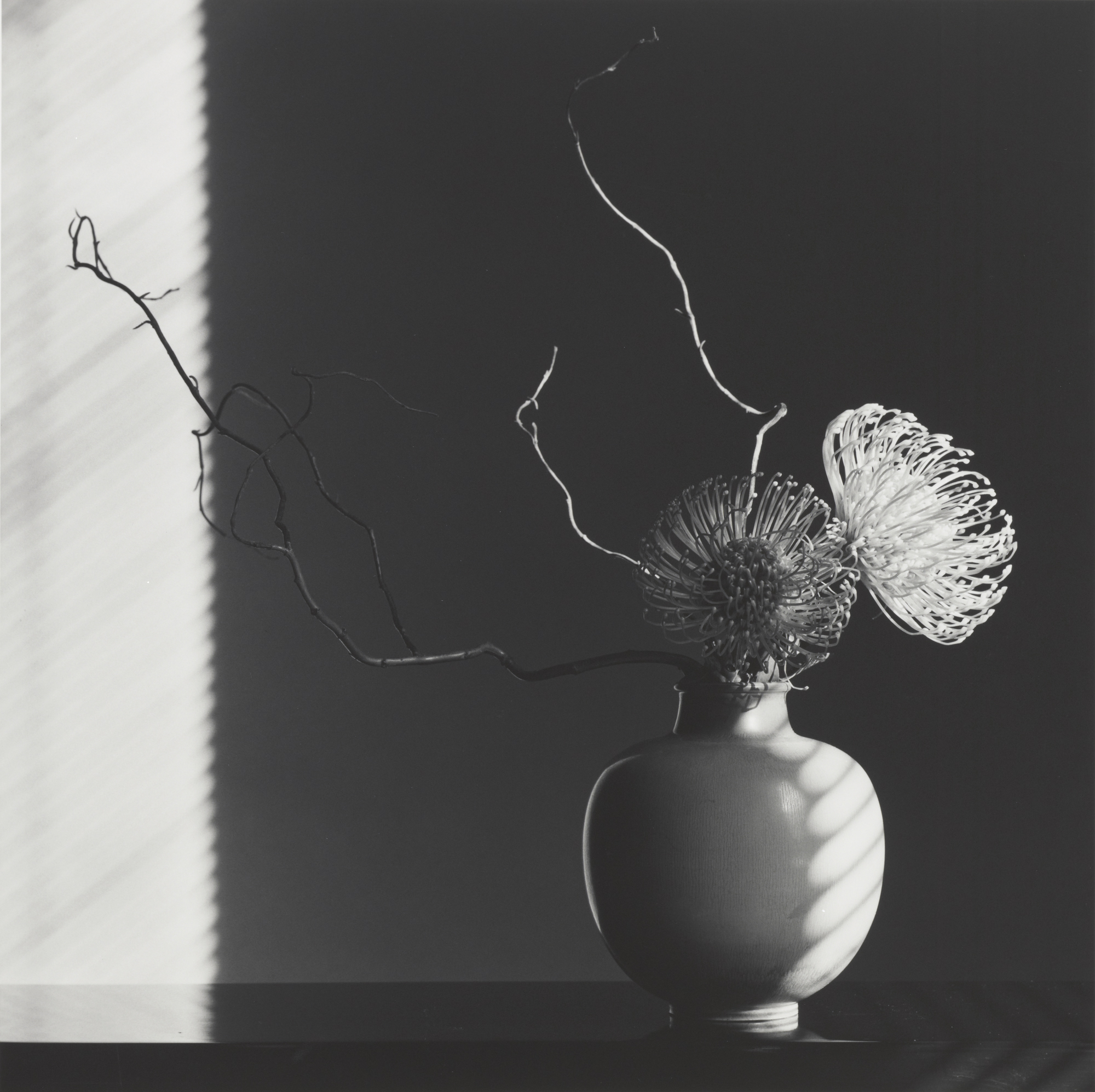 robert-mapplethorpe_flower-arrangement