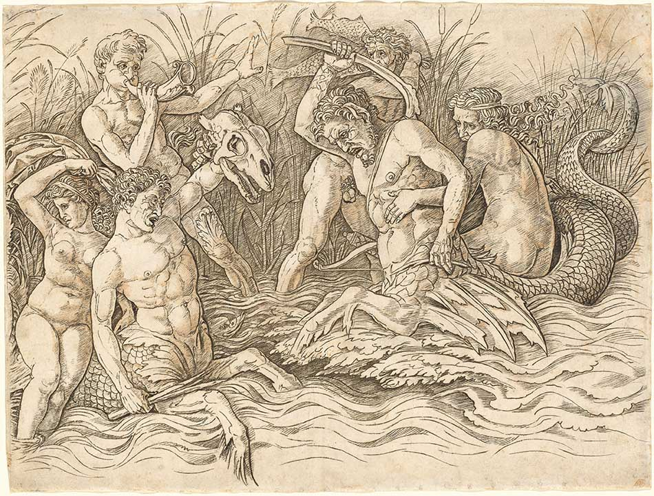 4969-088_workshop of andrea mantegna_battle of the sea gods