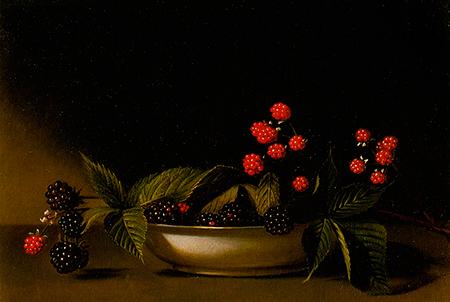 blackberries-raphaelle-peale_450_w