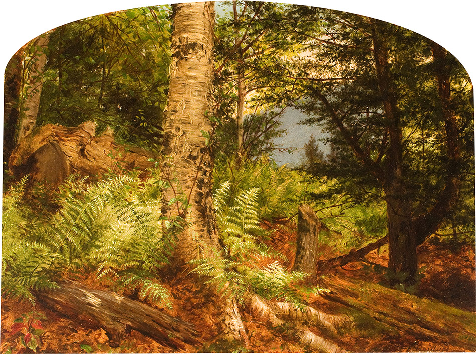 Fidelia Bridges_Study of Ferns_1864_4104-032_New Britain Museum of American Art_950w