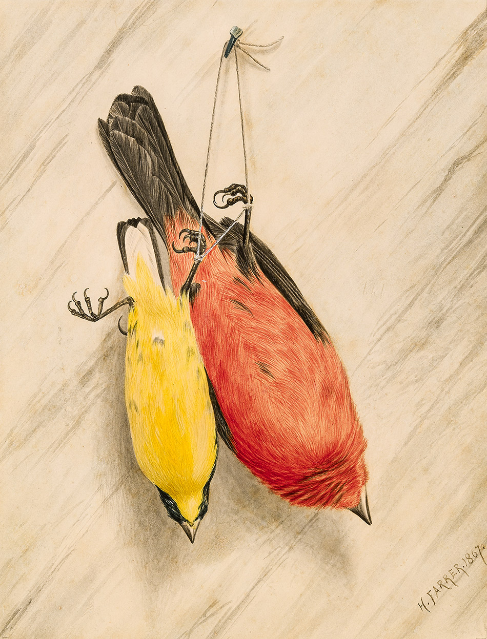 Henry-Farrer_Two-Birds_-Canary-and-Robin_1867_4104-049_Lent-by-Mr.-and-Mrs.-Stuart-P.-Feld_950w