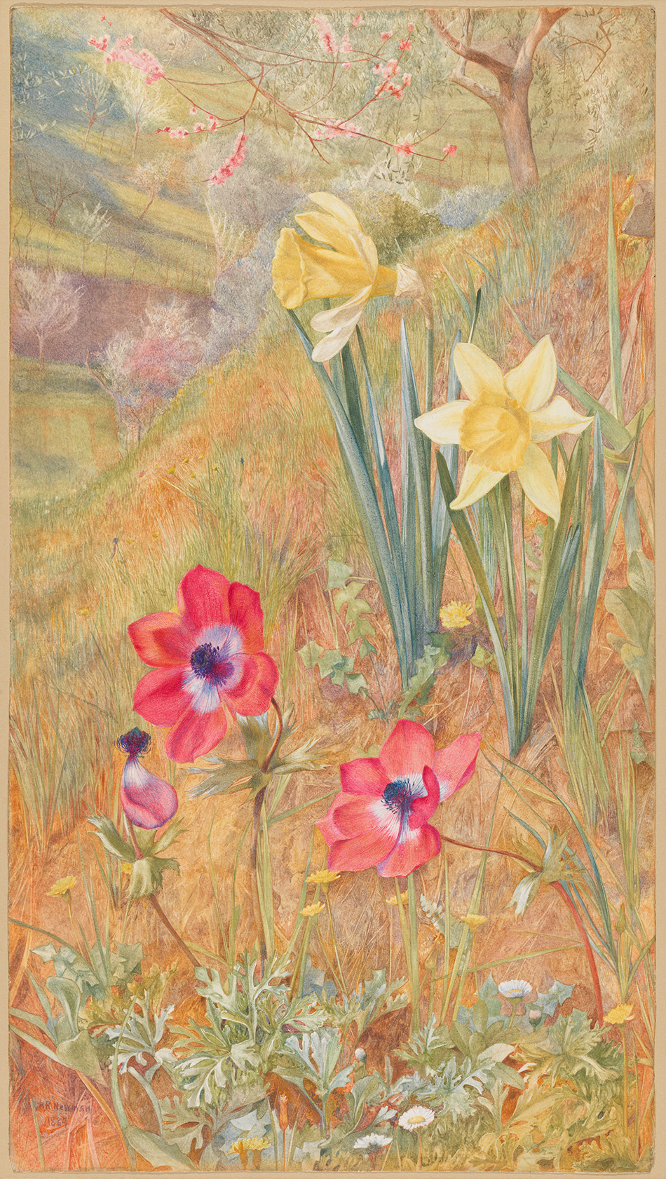 Henry-Roderick-Newman_Anemones-and-Daffodils_1884_4104-033_Virginia-Museum-of-Fine-Arts_950w