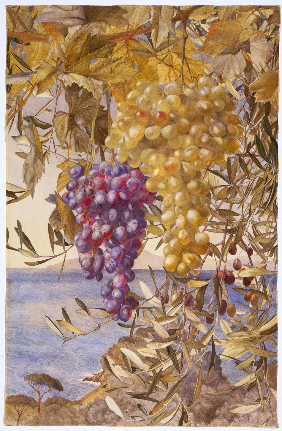 Henry-Roderick-Newman_Grapes-and-Olives-1878_4104-010_Brooklyn-Museum--New-York_950w