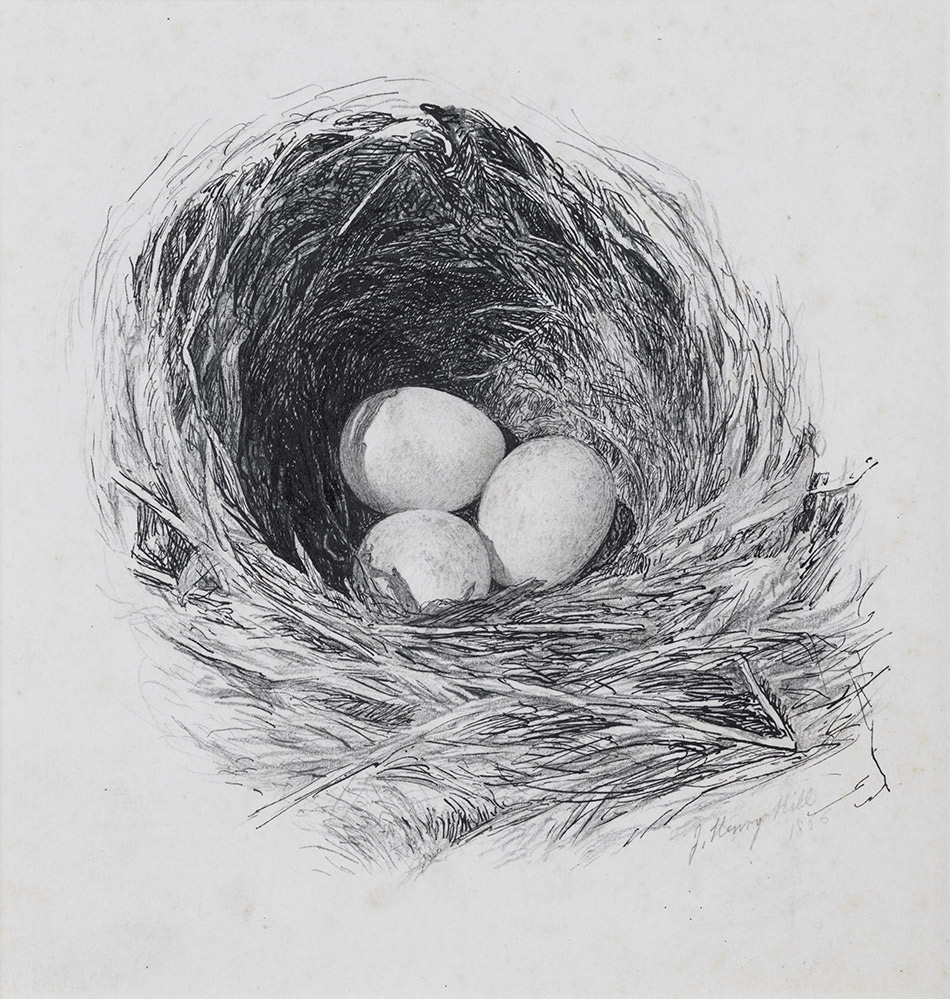 John-Henry-Hill_Thrushs-Nest-1866_4104-090_Leonard-and-Ellen-Milberg_950w
