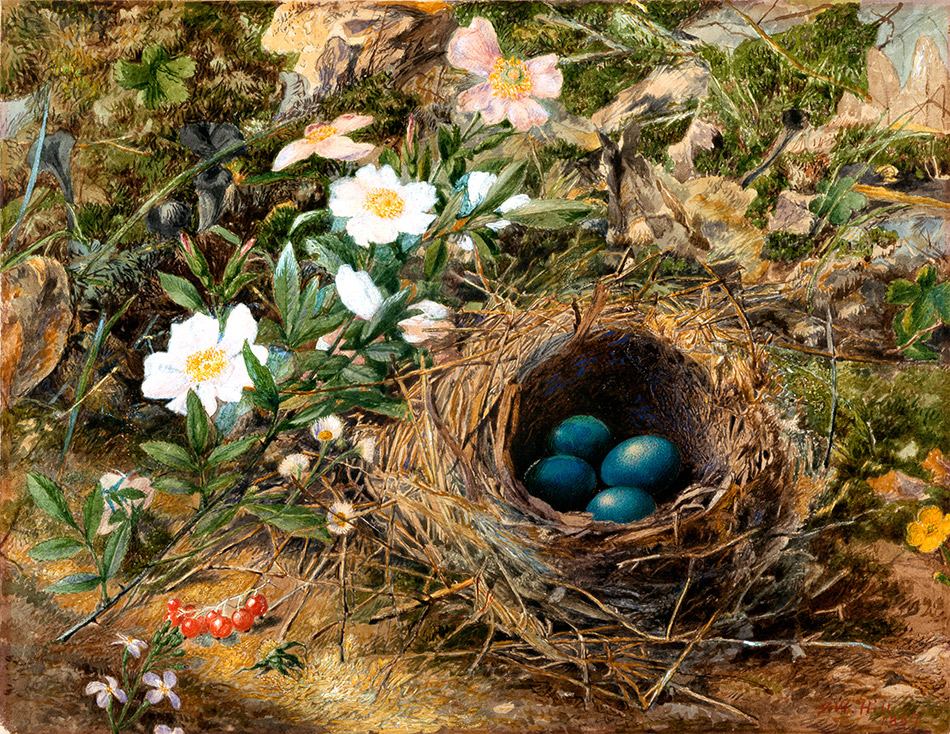 John-William-Hill_Birds-Nest-and-Dog-Roses-1867_4104-038_New-York-Historical-Society_950w