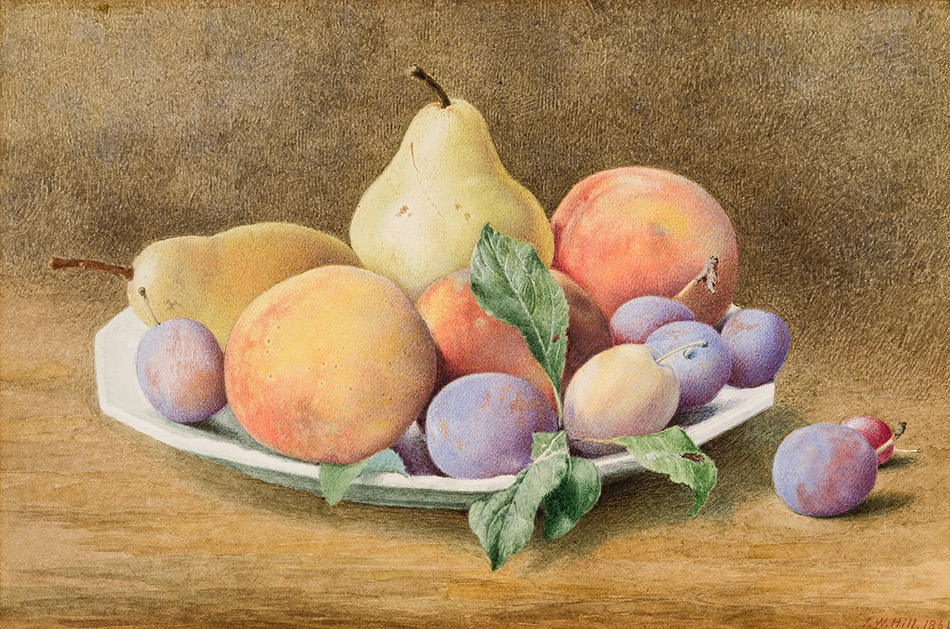 John-William-Hill_Plums-Pears-Peaches,-and-a-Grape-1864_4104-052_Lent-by-Mr.-and-Mrs.-Stuart-P.-Feld_950w