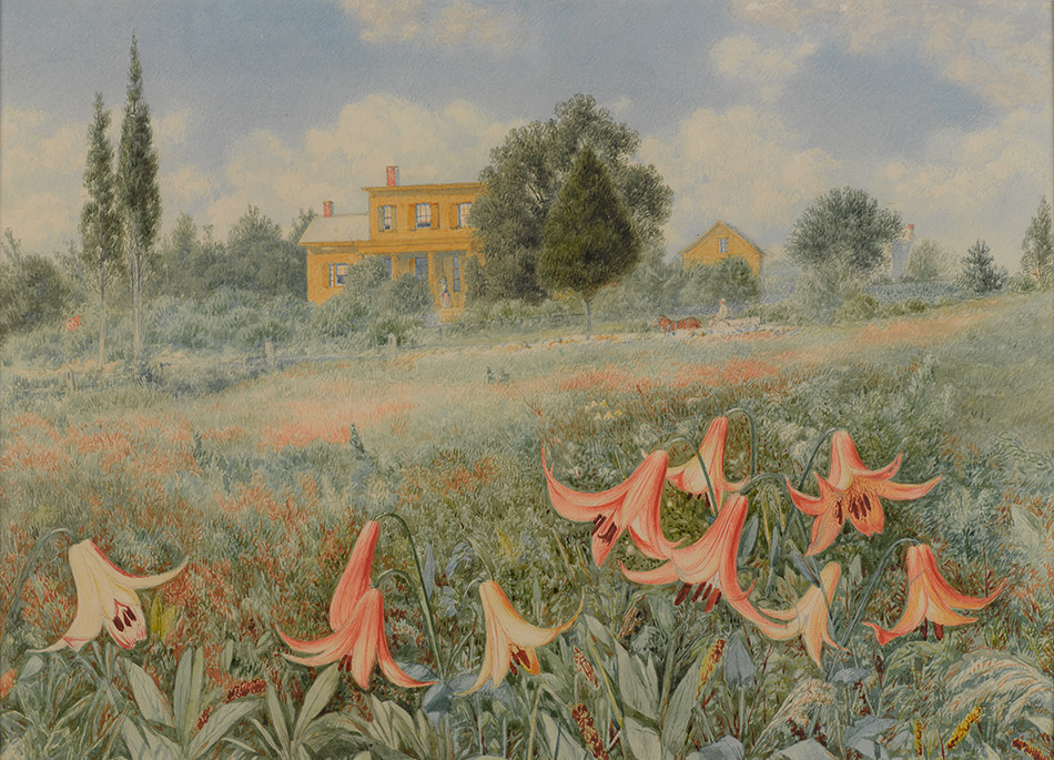 John-William-Hill_West-Nyack,-New-York--The-Lilies-of-the-Field-1868_4104-003_Brooklyn-Museum-New-York_950w