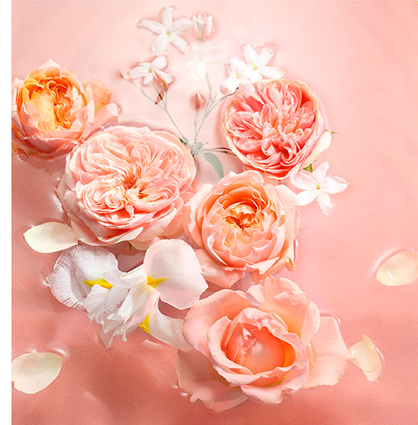 2019__Lalique__Limited-Editions_Flowers_margen