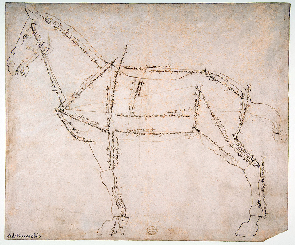 Andrea-del-Verrocchio_Measured-Drawing-of-a-Horse-Facing-Left_950-W