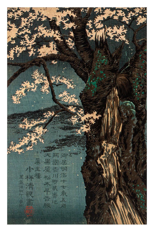 Kiyochika Kobayashi, Japan, 1847 - 1915, Taira no Tadanori (1144–1184) resting under a cherry tree, 1884 (Meiji 17), Tokyo, woodblock print, ink and colour on paper, triptych__detail 1